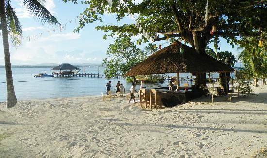 Precious Garden Samal: Beach