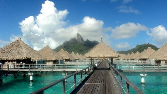 The St. Regis Bora Bora Resort: St. Regis Overwater Bungalows