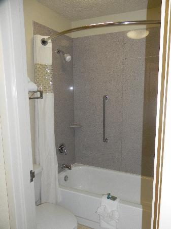 Baymont by Wyndham Greenville: Bathroom