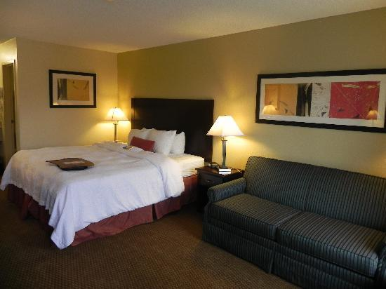 Baymont Inn & Suites Greenville: King