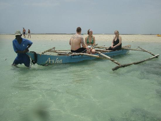 Diani Blue: Snorkelling on the Asha boat
