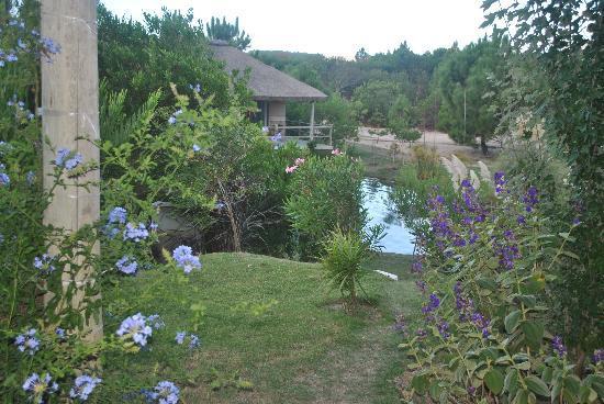 Casa Suaya: Grounds
