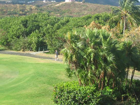 The Buccaneer -- St Croix: hiking trail and golf