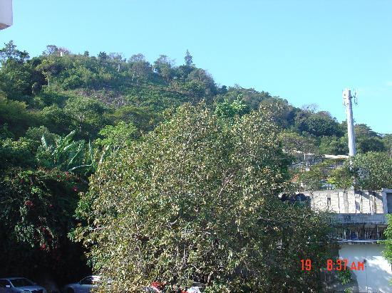 Ridgeway Guest House: View from hotel balcony