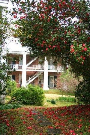 Elgin Plantation Bed and Breakfast: Guest House, Elgin