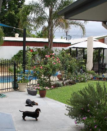 A Good Rest B&B: the dogs loved it !