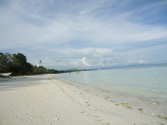Amarela Resort: plage hotel