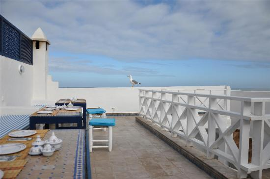 La Casa del Mar : Terrace
