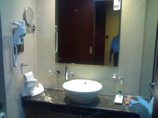 Daspalla Hotel: Elegant Wash Room