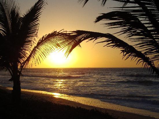 Gambia Coral Beach Hotel & Spa: the beach off the hotel gardens