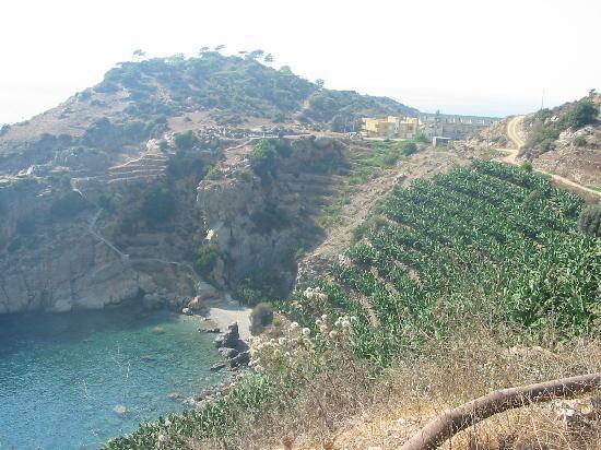 Gazipaşa, Türkiye: Banana Plantations above secluded beach