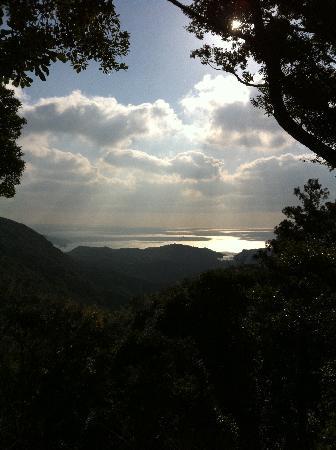 Terra Ikoi-no-Soto Symphony House: 海の見えるハイキングコース