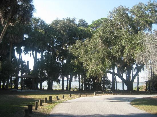 Trimble Park: Driveway into the park