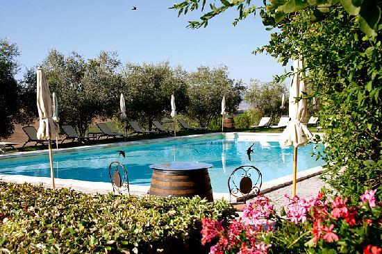 Borgo Tre Rose: Piscina