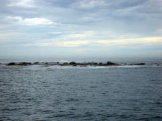 Ilha dos Lobos