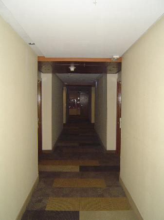 Atton Hotel El Bosque: dark hallways...no biggie though