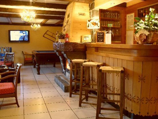 Hotel Alpina : Salon