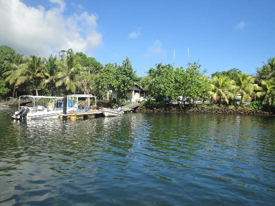 Kosrae Village Ecolodge & Dive Resort: The 'scape'