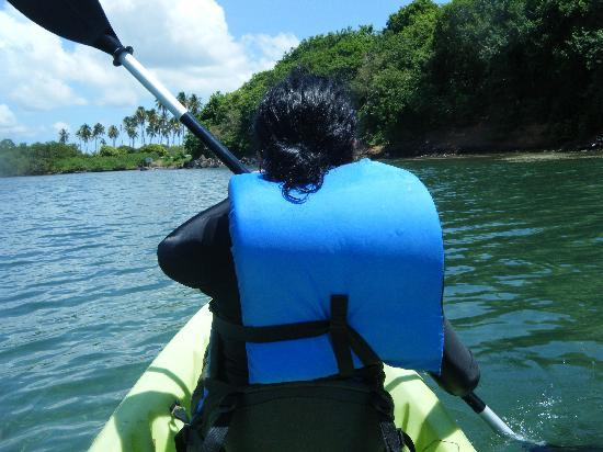 Barefoot Travelers Rooms: kayaking to Monkey Island