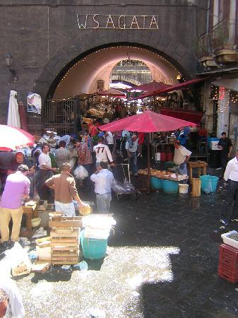 Picone Bed Breakfast: Il mercato del pesce