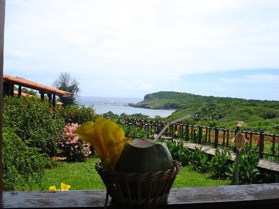Pousada Solar Dos Ventos : dal bungalow acqua di cocco di benvenuto