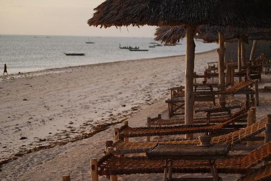 Blue Oyster Hotel: The beach at sunrise