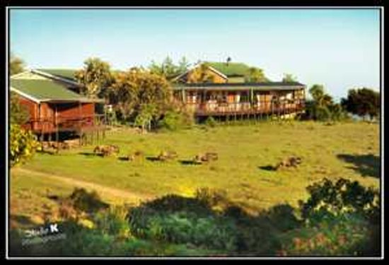 Kwelanga Country Retreat: Wildlife at your frontdoor
