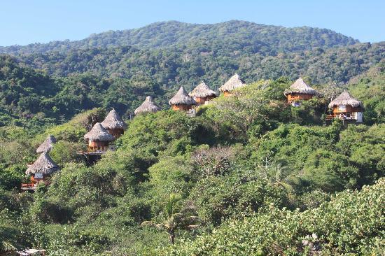 Eco-Habs : Die Ecohabs verteilen sich über den ganzen Hügel