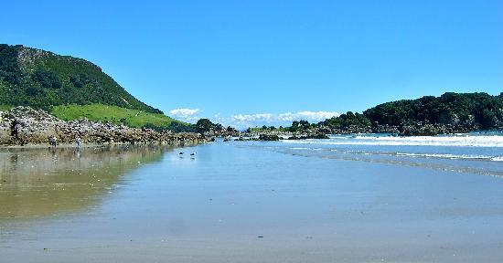 Maunganui Beach: One of our favorite visits in NZ