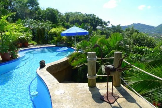 Las Palmas B&B : Our inviting pool!