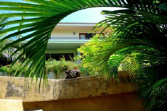 Las Palmas B&B: Lush landscaping around our B&B.