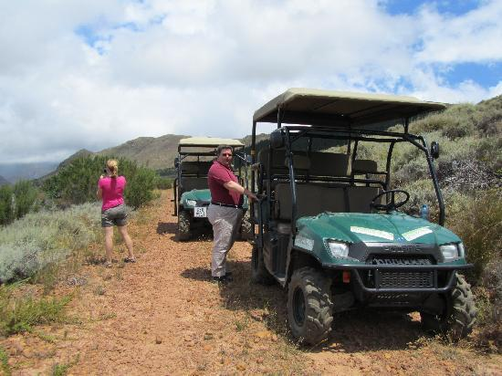 Adventure Wine Tours - Day Tours: Time for a coffee and chocolate biscuit