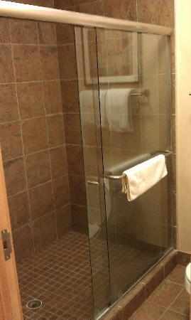 LivINN Hotel Minneapolis North / Fridley: GIANT SHOWER!