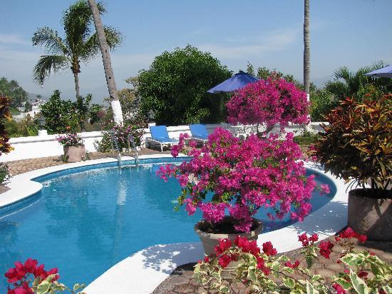 Hotel Villas Los Angeles: Poolside at Villas Los Angeles