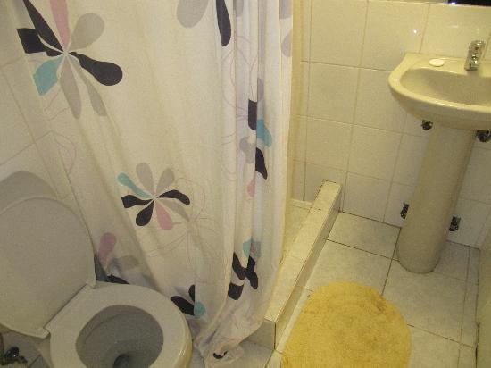 Hotel Da Vinci Valparaiso: bathroom