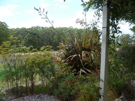 Big Brook Cottages: Gardens at big Brooke