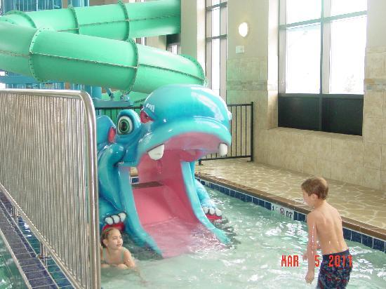 Kiddie slide picture of holiday inn express suites - Swimming pools in great falls montana ...