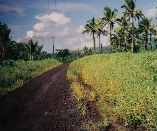 Samoan Country Road Upolu Island, Samoa