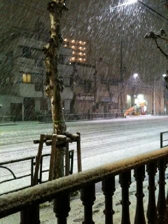 Palace Japan: It is snowed .