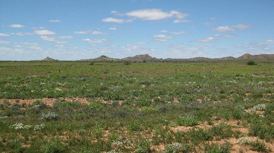 Alice Springs, Australie : コメントを入力してください (必須)