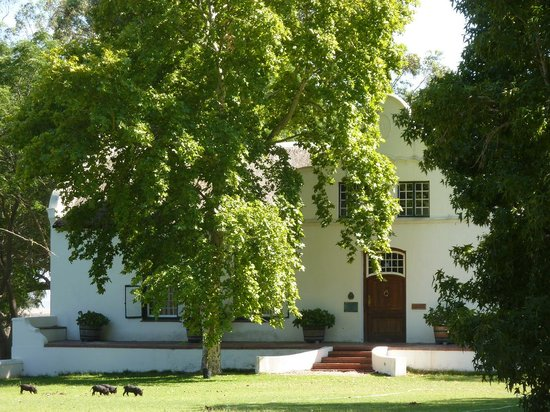 Kersefontein Guest Farm: Front of the farm