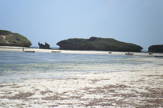 Kenyan House Boutique Hotel: spiaggia watamu