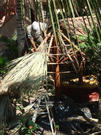Casa de La Sirena : Building a Palapa to make the barbeque area they have set up even cooler!