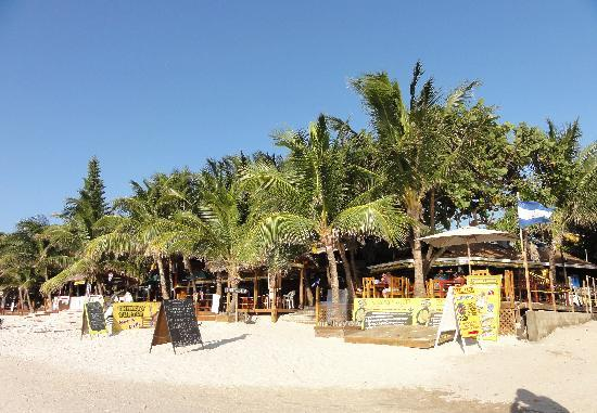 Bananarama Beach and Dive Resort: from the beach
