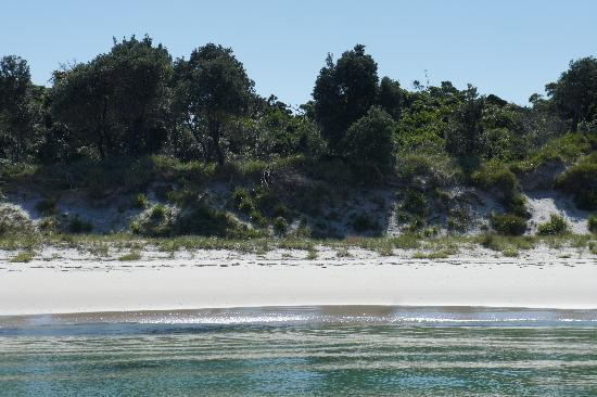 Huskisson Bed and Breakfast: One of the many beaches in Jervis Bay