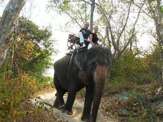 Springfield @ Sea Resort & Spa: Treck à dos d'éléphant