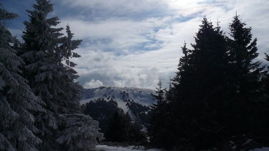 Kopaonik, Σερβία: View of the Pancic's peak from Gobelja peak