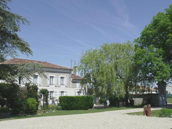 Sainte-Meme, France : Welcome to Les Grands Arbres