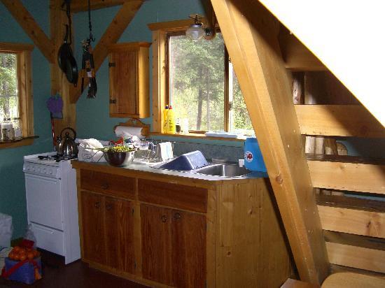 Wheaton River Wilderness Retreat: Küche