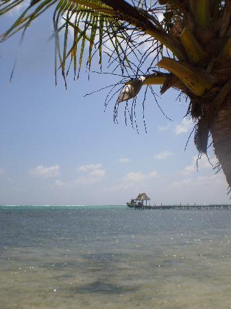 Xaman Ek Resort & Spa: Beach